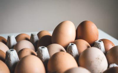 Les œufs Bleu-Blanc-Cœur : de plus en plus disponibles en magasins !