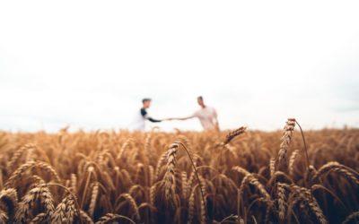 Est-ce que la filière Bleu-Blanc-Cœur prend en compte la problématique OGM dans ses cahiers des charges?