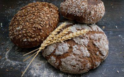 Etude clinique sur le lien entre consommation de pain au lin extrudé et paramètres sanguins