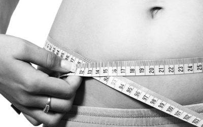 """Etude clinique sur le lien entre menus """"Bleu-Blanc-Cœur » et obésité"""