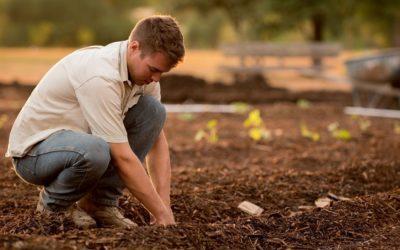 ONE HEALTH : De la santé des sols à la santé des hommes, il n'y a qu'un pas !