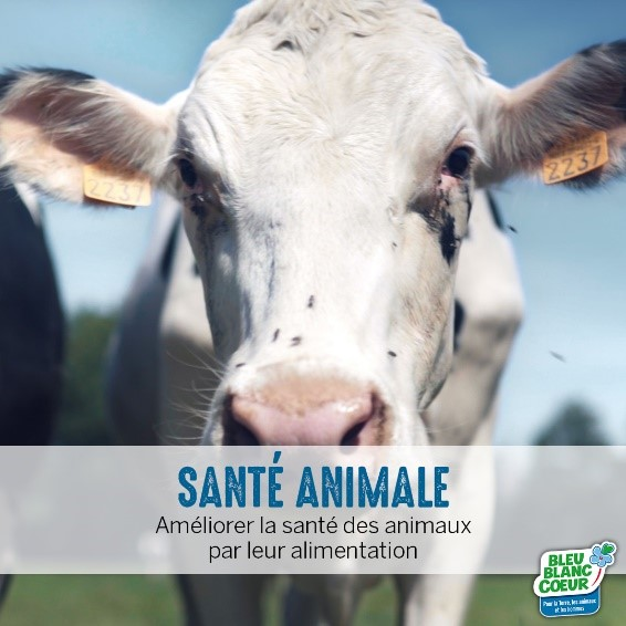 Santé animale et Bleu-Blanc-Coeur