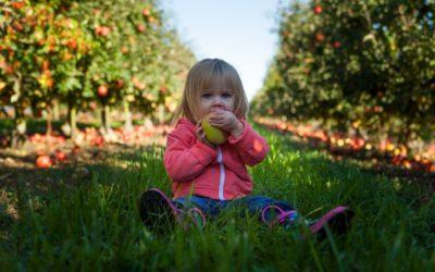 Comment bien faire manger les enfants ?