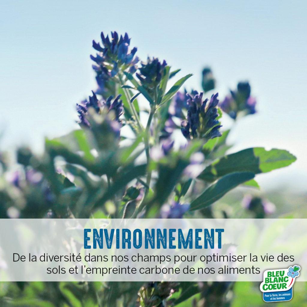 Préserver l'environnement agriculture durable